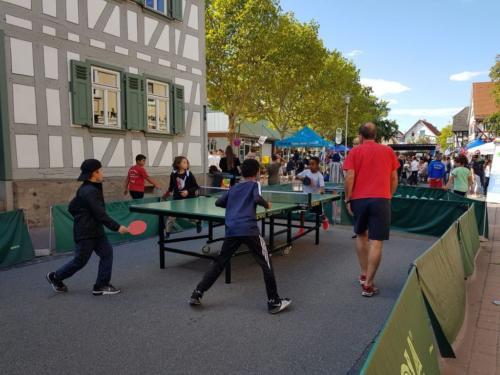 Fest der Vielfalt auf dem Dalles 2018